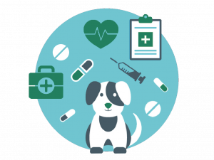 veterinaire-jeanne-d-arc-2-1247x936